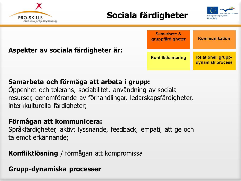 Sociala färdigheter Aspekter av sociala färdigheter är: Samarbete och förmåga att arbeta i grupp: Öppenhet och tolerans, sociabilitet, användning av s
