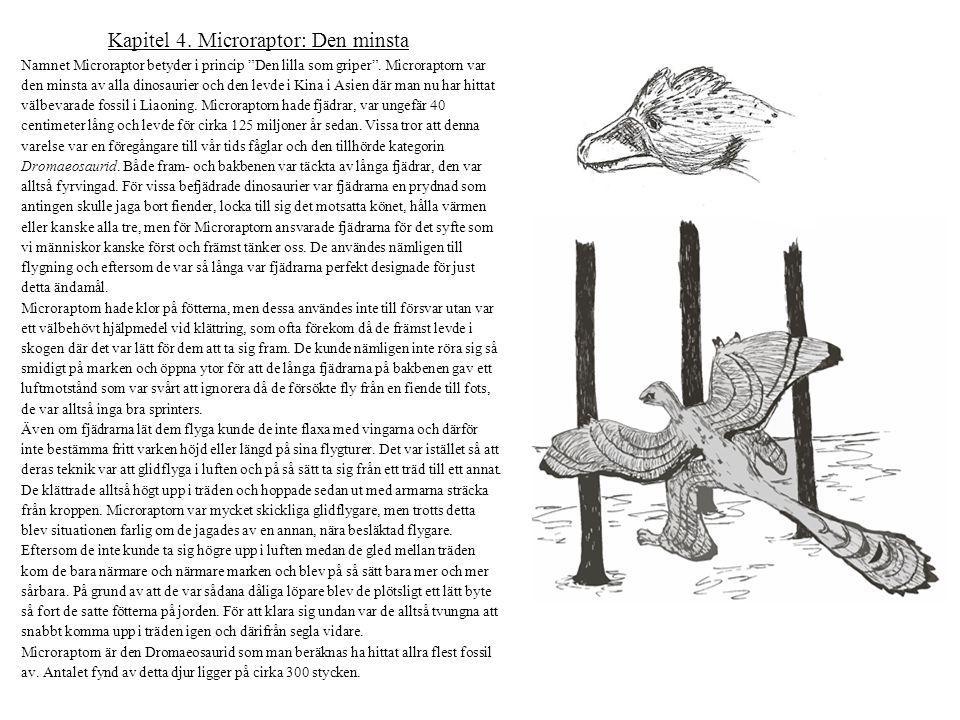 """Kapitel 4. Microraptor: Den minsta Namnet Microraptor betyder i princip """"Den lilla som griper"""". Microraptorn var den minsta av alla dinosaurier och de"""