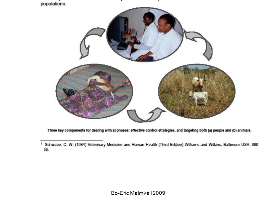 Bo-Eric Malmvall 2009 Fågelinfluensa H5N1 högpatogen Varför oro ?.
