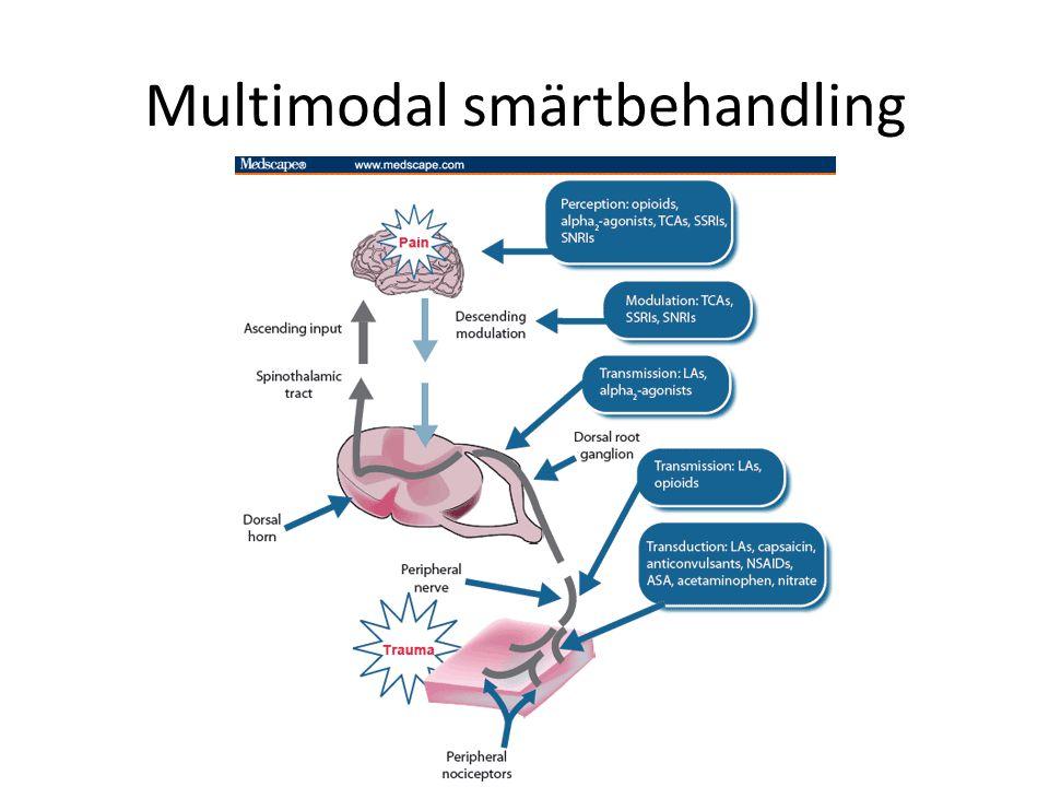 Multimodal smärtbehandling Symtomlindring i palliativ vård 2013
