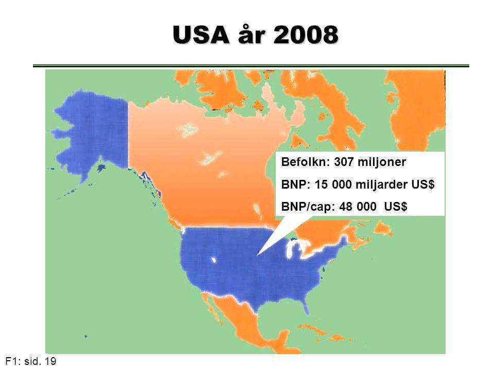 F1: sid. 19 USA år 2008 USA år 2008 Befolkn: 307 miljoner BNP: 15 000 miljarder US$ BNP/cap: 48 000 US$