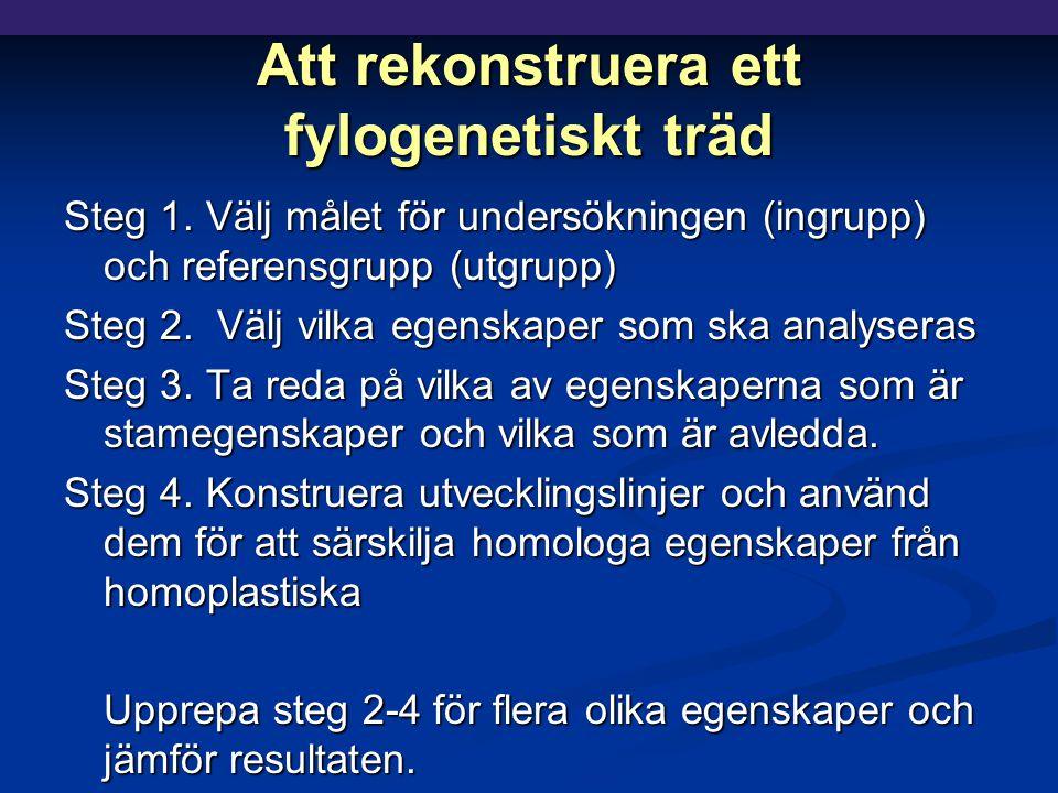 Att rekonstruera ett fylogenetiskt träd Steg 1.