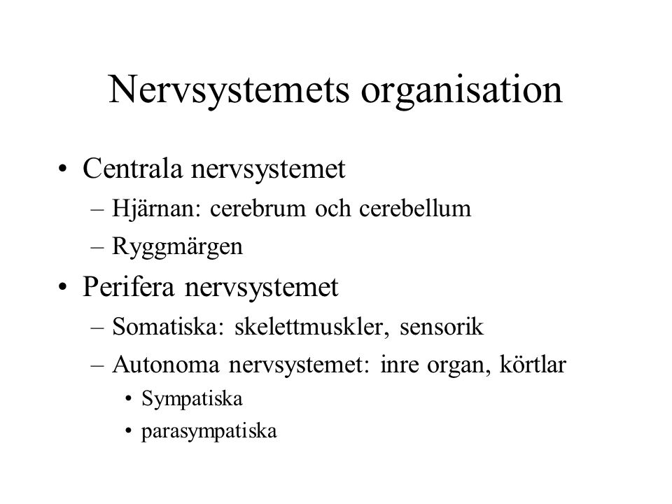 Nervsystemets organisation Centrala nervsystemet –Hjärnan: cerebrum och cerebellum –Ryggmärgen Perifera nervsystemet –Somatiska: skelettmuskler, sensorik –Autonoma nervsystemet: inre organ, körtlar Sympatiska parasympatiska