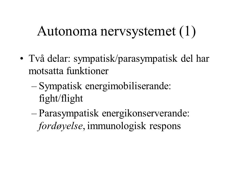 Autonoma nervsystemet (1) Två delar: sympatisk/parasympatisk del har motsatta funktioner –Sympatisk energimobiliserande: fight/flight –Parasympatisk energikonserverande: fordøyelse, immunologisk respons
