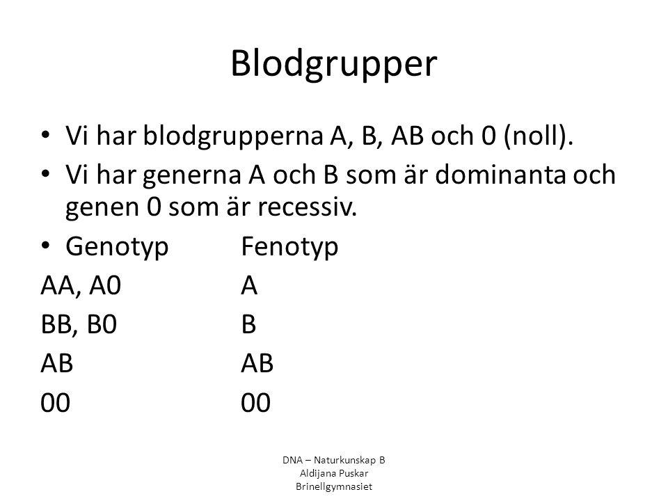 Blodgrupper Vi har blodgrupperna A, B, AB och 0 (noll). Vi har generna A och B som är dominanta och genen 0 som är recessiv. GenotypFenotyp AA, A0A BB