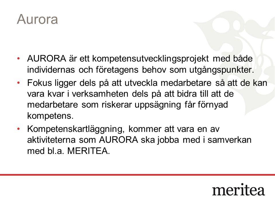 Aurora AURORA är ett kompetensutvecklingsprojekt med både individernas och företagens behov som utgångspunkter. Fokus ligger dels på att utveckla meda