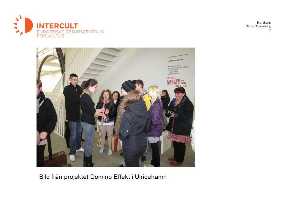Kortkurs EU och Finansiering 9 Bild från projektet Domino Effekt i Ulricehamn
