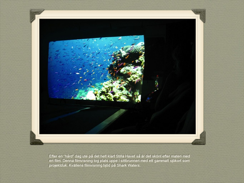 """Efter en """"hård"""" dag ute på det helt klart Stilla Havet så är det skönt efter maten med en film. Denna filmvisning tog plats uppe i sittbrunnen med ett"""