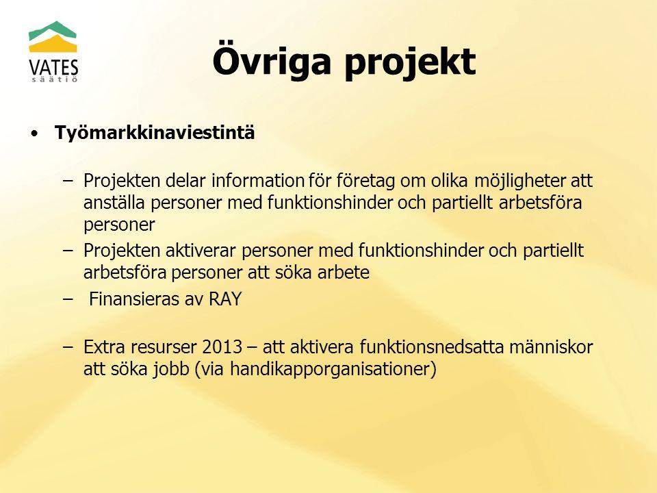 Övriga projekt Työmarkkinaviestintä –Projekten delar information för företag om olika möjligheter att anställa personer med funktionshinder och partie