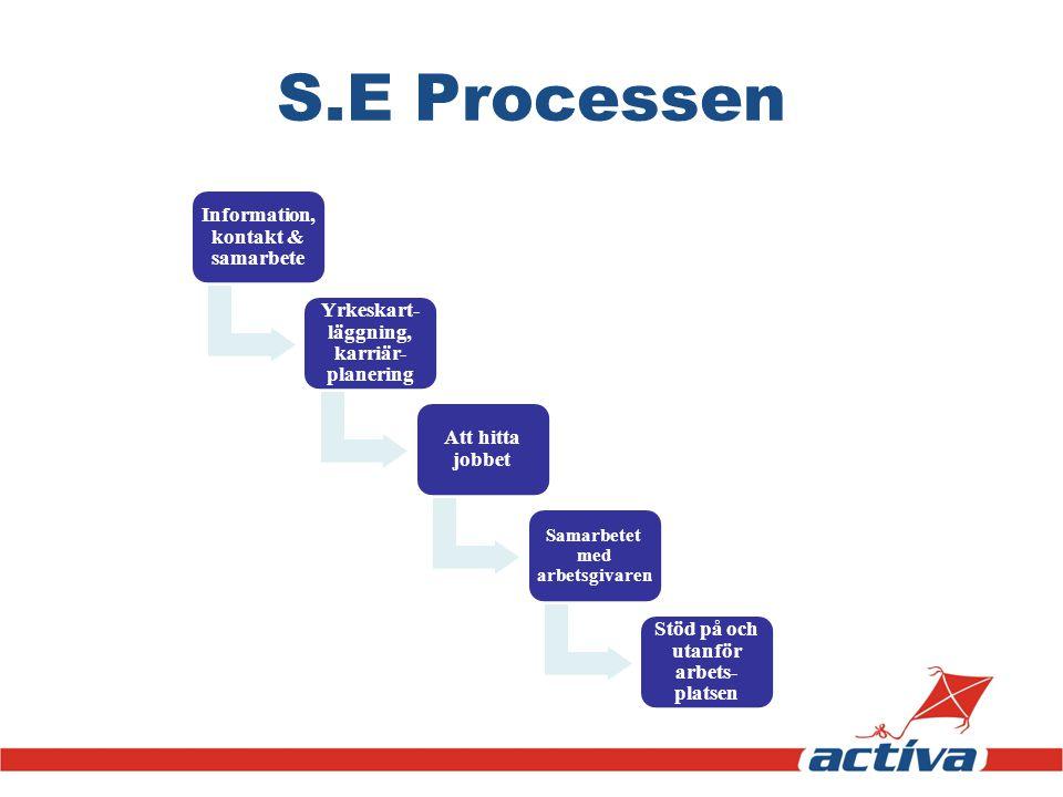 S.E Processen Information, kontakt & samarbete Yrkeskart- läggning, karriär- planering Att hitta jobbet Samarbetet med arbetsgivaren Stöd på och utanf