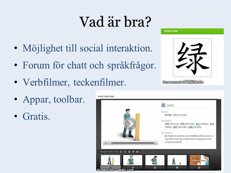 Möjlighet till social interaktion. Forum för chatt och språkfrågor.
