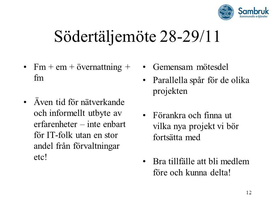 12 Södertäljemöte 28-29/11 Fm + em + övernattning + fm Även tid för nätverkande och informellt utbyte av erfarenheter – inte enbart för IT-folk utan e