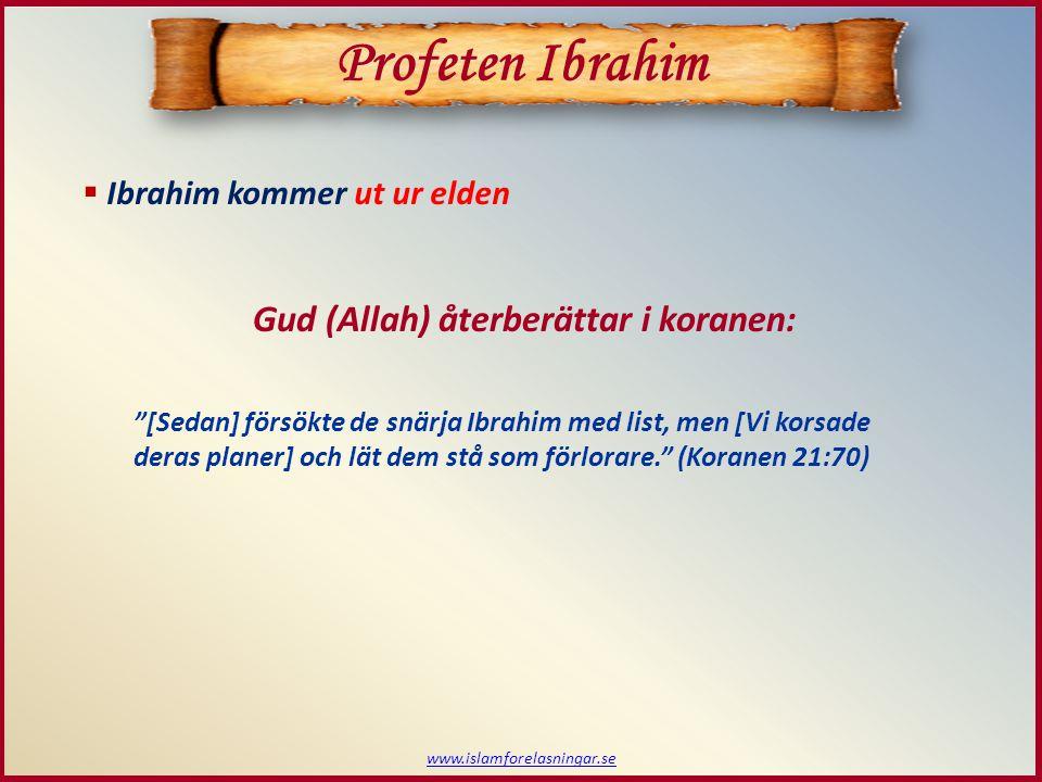 www.islamforelasningar.se  Ibrahim kommer ut ur elden Gud (Allah) återberättar i koranen: [Sedan] försökte de snärja Ibrahim med list, men [Vi korsade deras planer] och lät dem stå som förlorare. (Koranen 21:70) Profeten Ibrahim