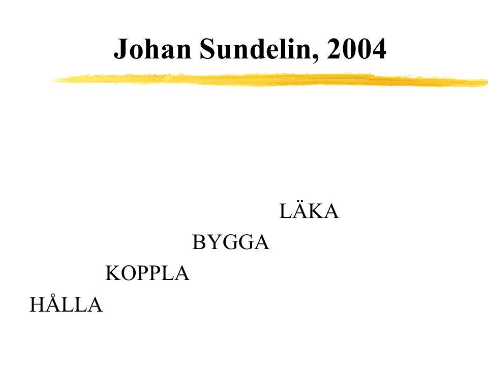 Johan Sundelin, 2004 LÄKA BYGGA KOPPLA HÅLLA