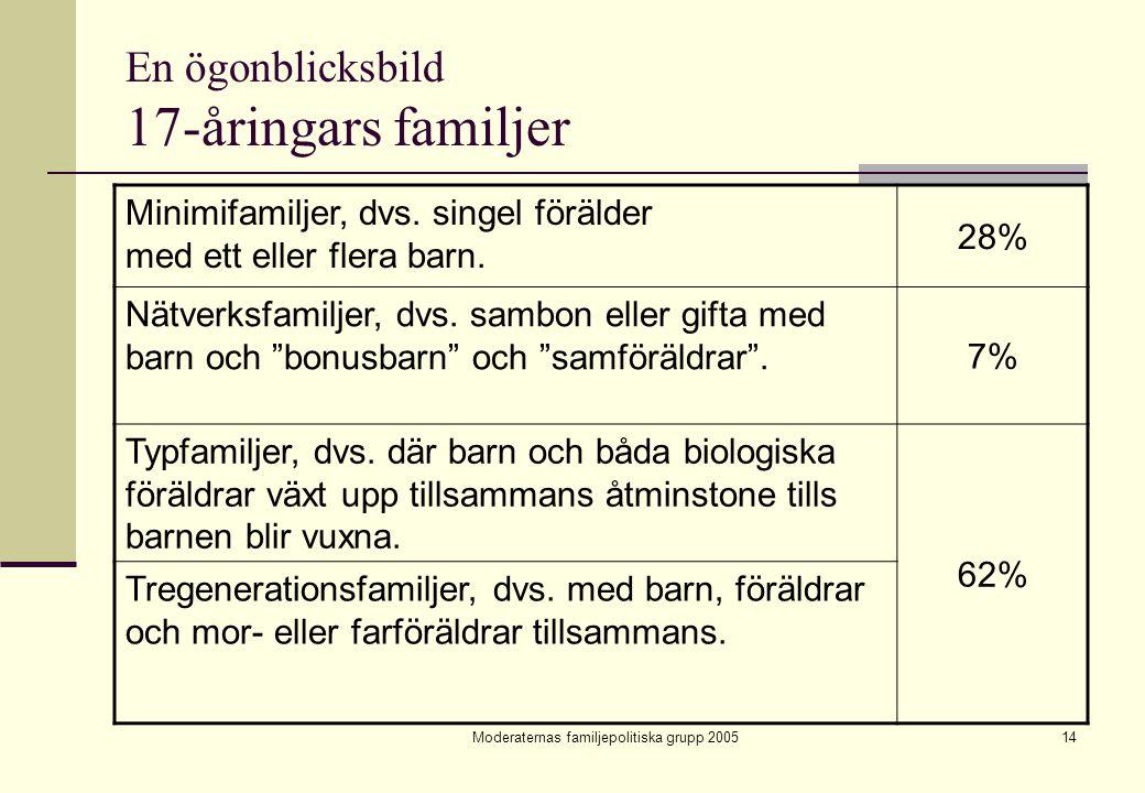 Moderaternas familjepolitiska grupp 200514 En ögonblicksbild 17-åringars familjer Minimifamiljer, dvs. singel förälder med ett eller flera barn. 28% N