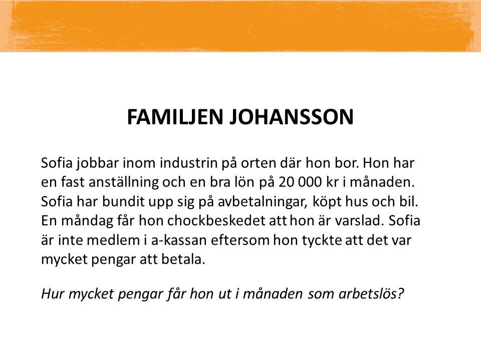 FAMILJEN JOHANSSON Sofia jobbar inom industrin på orten där hon bor. Hon har en fast anställning och en bra lön på 20 000 kr i månaden. Sofia har bund