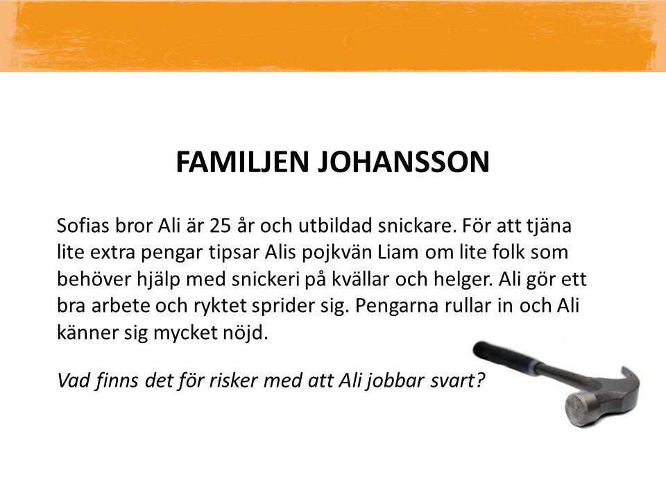 FAMILJEN JOHANSSON Sofias bror Ali är 25 år och utbildad snickare. För att tjäna lite extra pengar tipsar Alis pojkvän Liam om lite folk som behöver h