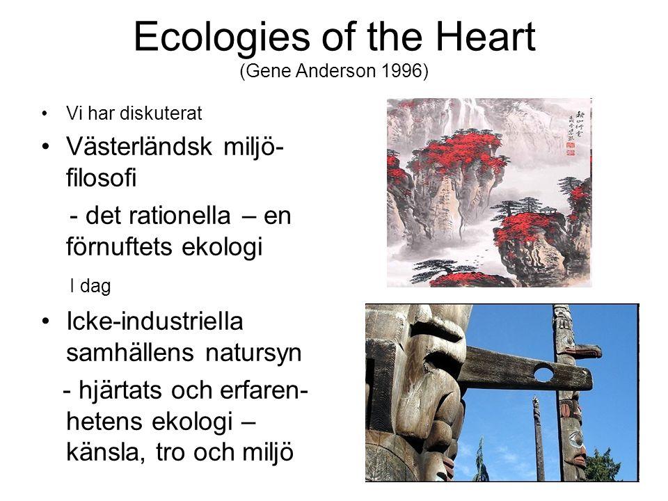 Ecologies of the Heart (Gene Anderson 1996) Vi har diskuterat Västerländsk miljö- filosofi - det rationella – en förnuftets ekologi I dag Icke-industriella samhällens natursyn - hjärtats och erfaren- hetens ekologi – känsla, tro och miljö