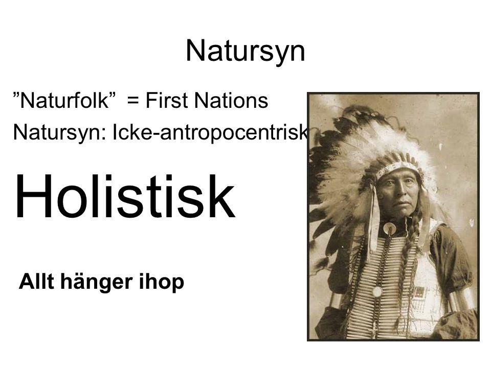 Natursyn Naturfolk = First Nations Natursyn: Icke-antropocentrisk Holistisk Allt hänger ihop