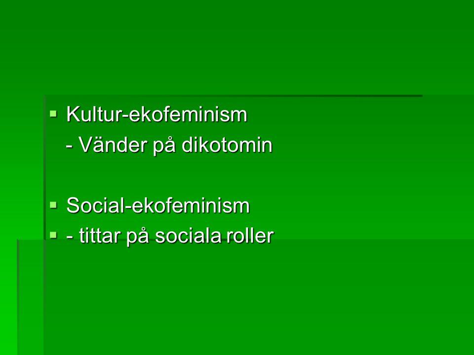  Kultur-ekofeminism - Vänder på dikotomin - Vänder på dikotomin  Social-ekofeminism  - tittar på sociala roller