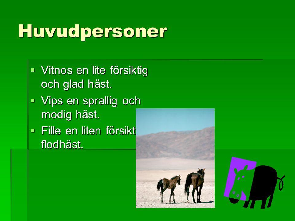 Huvudpersoner  Vitnos en lite försiktig och glad häst.