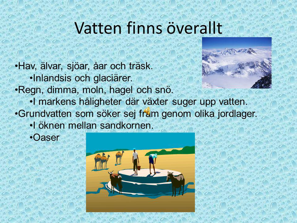 Vatten finns överallt Hav, älvar, sjöar, åar och träsk. Inlandsis och glaciärer. Regn, dimma, moln, hagel och snö. I markens håligheter där växter sug