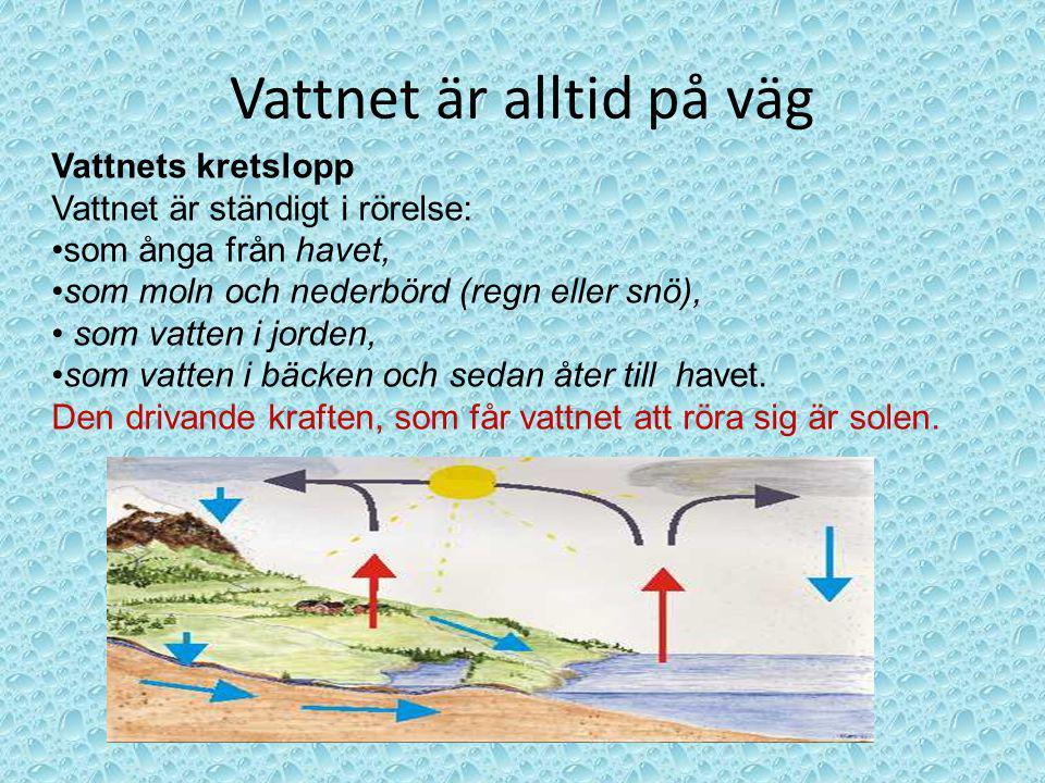 Vattnet är alltid på väg Vattnets kretslopp Vattnet är ständigt i rörelse: som ånga från havet, som moln och nederbörd (regn eller snö), som vatten i