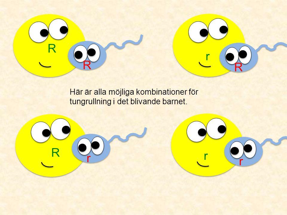 R R R r r r Rr Här är alla möjliga kombinationer för tungrullning i det blivande barnet.