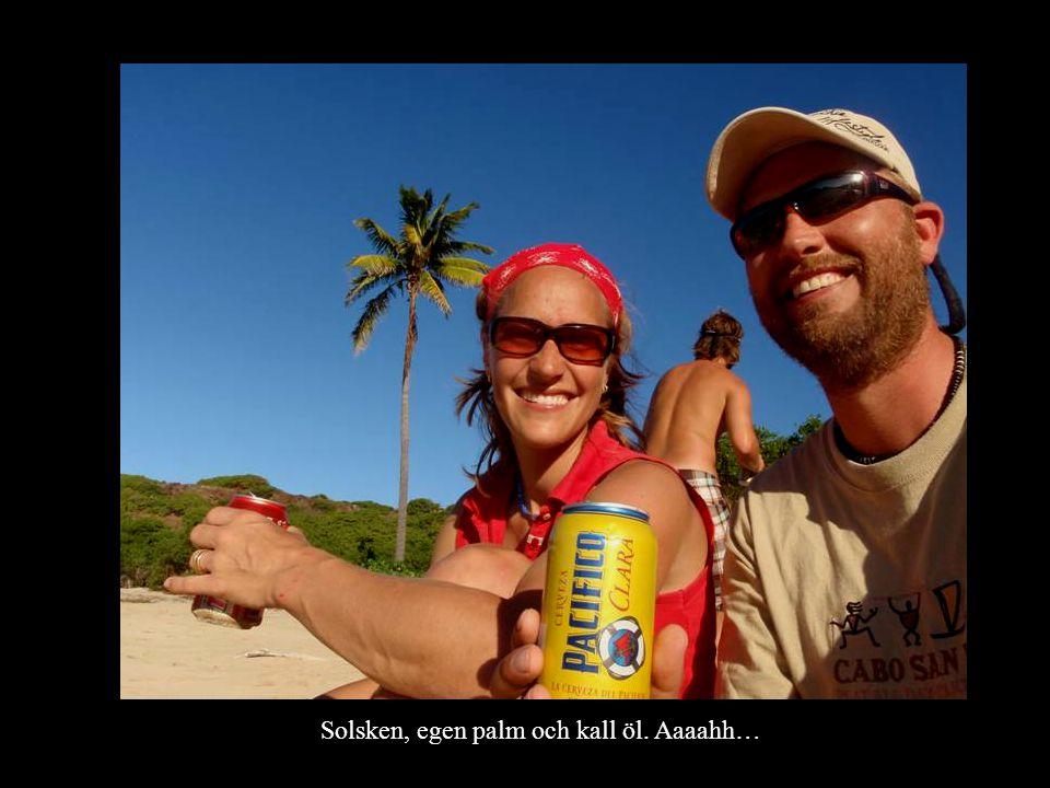 Solsken, egen palm och kall öl. Aaaahh…