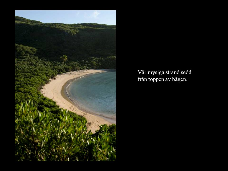 Vår mysiga strand sedd från toppen av bågen.