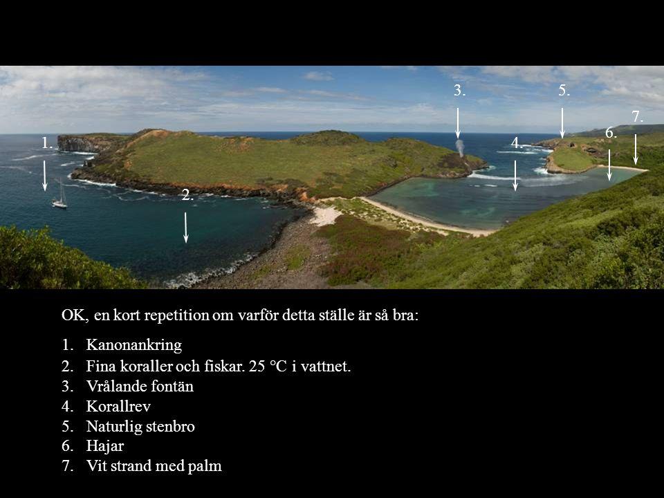 1. 2. 4. 5. 6. 7. 3. OK, en kort repetition om varför detta ställe är så bra: 1.Kanonankring 2.Fina koraller och fiskar. 25 °C i vattnet. 3.Vrålande f