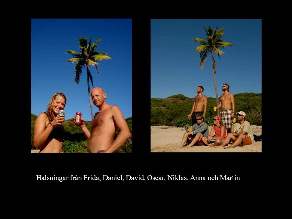 Hälsningar från Frida, Daniel, David, Oscar, Niklas, Anna och Martin