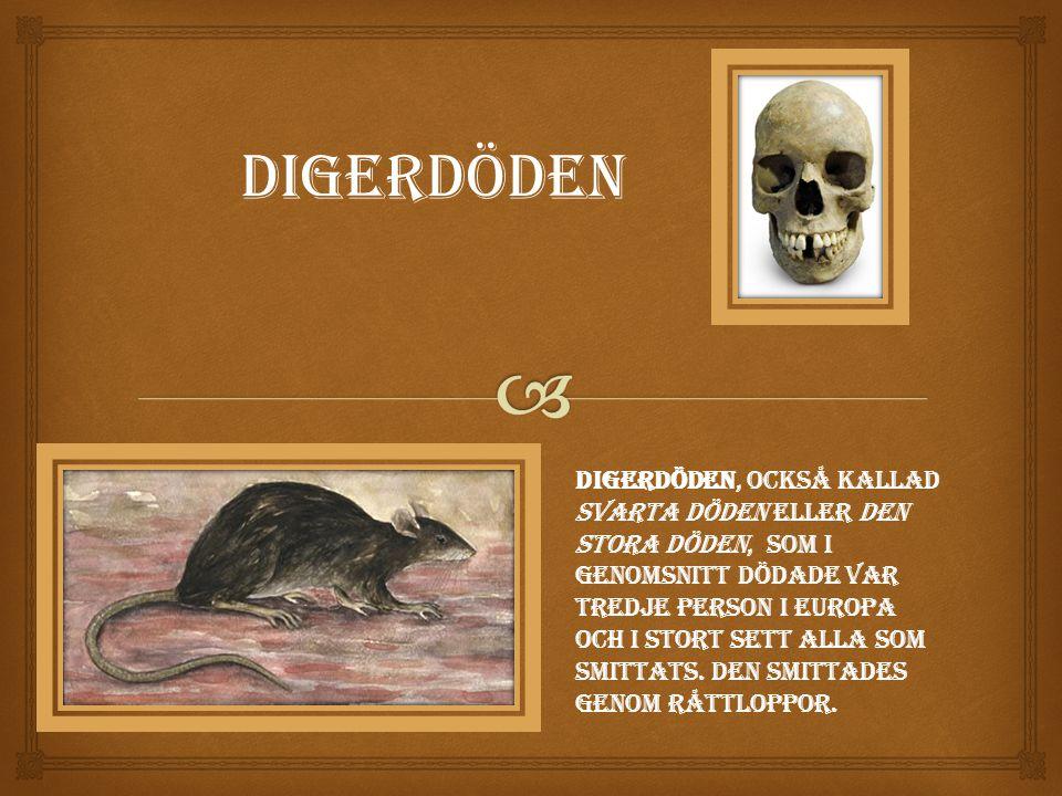 Digerdöden Digerdöden, också kallad svarta döden eller den stora döden, som i genomsnitt dödade var tredje person i Europa och i stort sett alla som smittats.