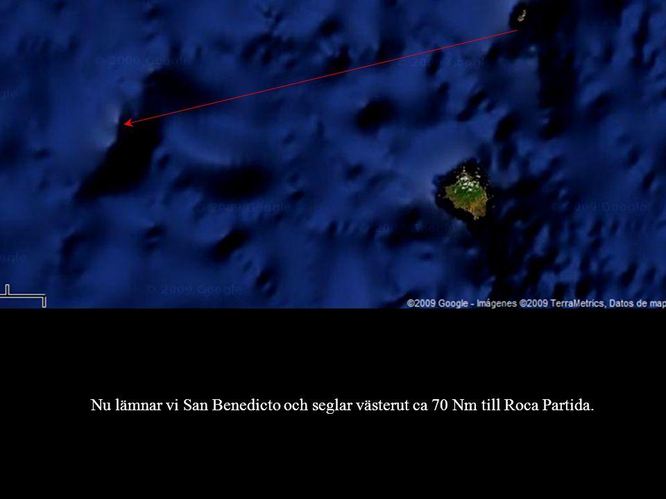 Nu lämnar vi San Benedicto och seglar västerut ca 70 Nm till Roca Partida.