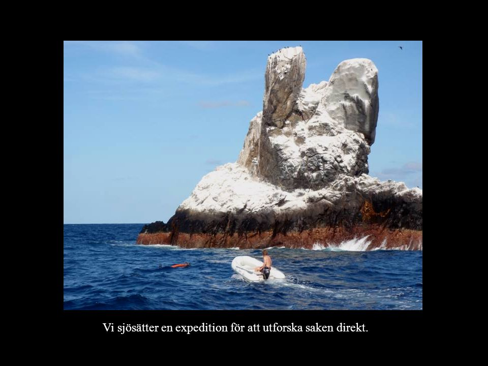 Klippan är täckt med koraller under vattenlinjen. Det bor massor med fiskar här.