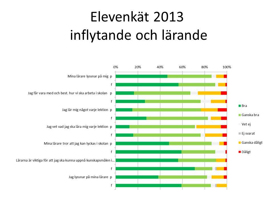 Elevenkät 2013 inflytande och lärande
