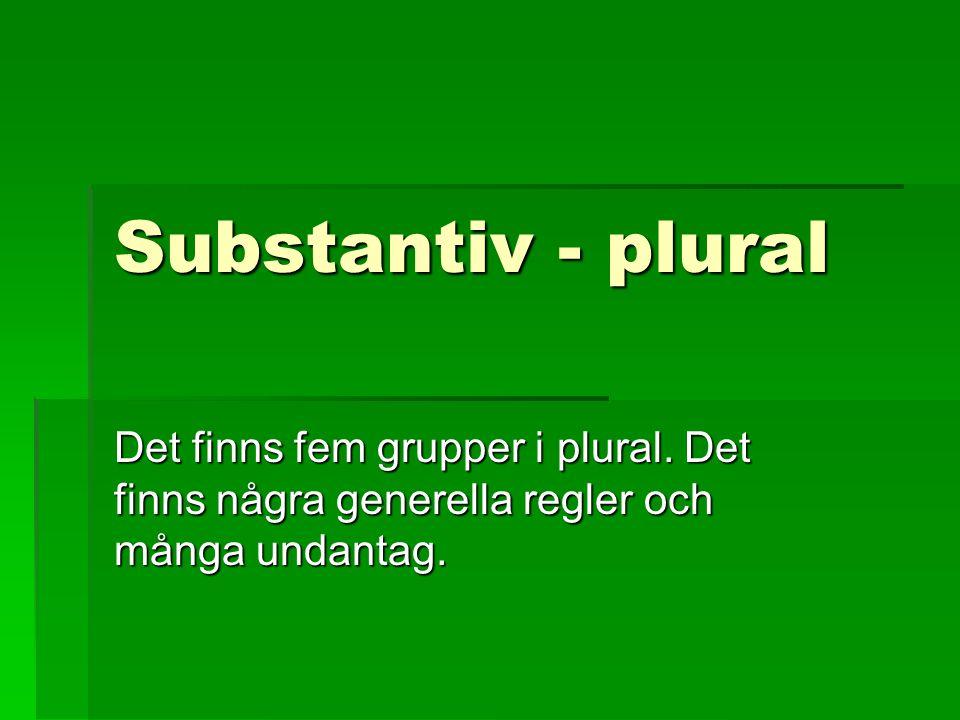Substantiv - plural Det finns fem grupper i plural. Det finns några generella regler och många undantag.