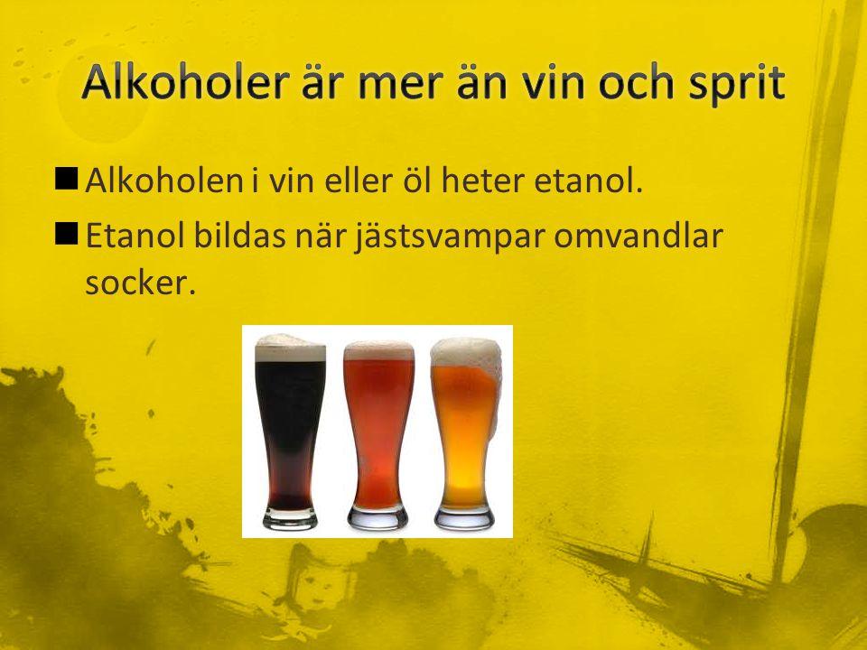 Alkoholen i vin eller öl heter etanol. Etanol bildas när jästsvampar omvandlar socker.