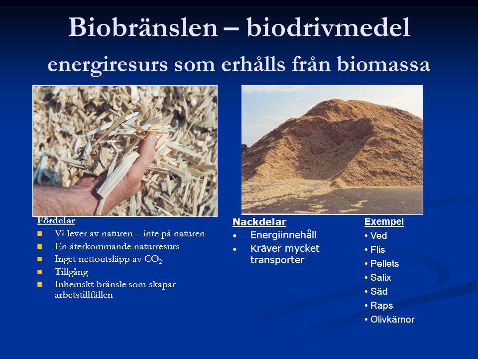 Biobränslen – biodrivmedel energiresurs som erhålls från biomassa Fördelar Vi lever av naturen – inte på naturen En återkommande naturresurs Inget net
