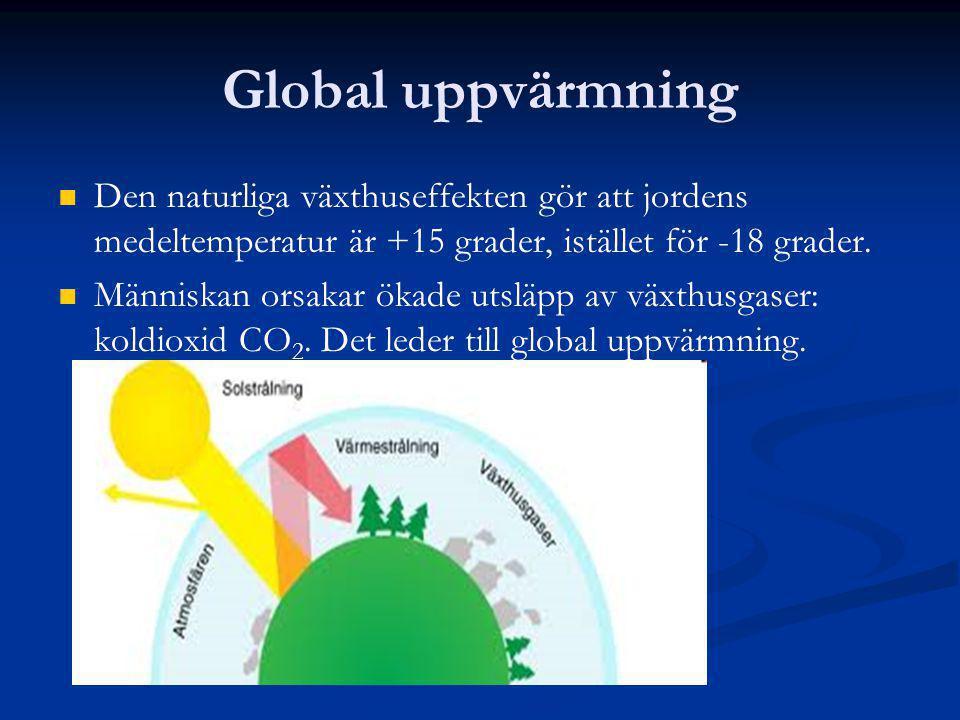 Global uppvärmning Den naturliga växthuseffekten gör att jordens medeltemperatur är +15 grader, istället för -18 grader. Människan orsakar ökade utslä