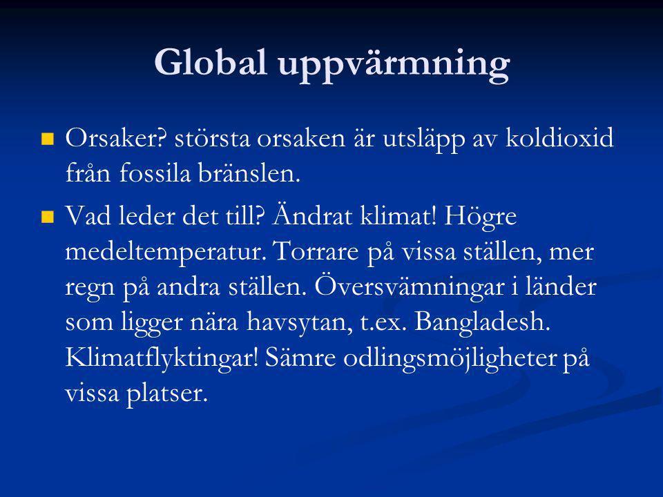 Global uppvärmning Orsaker? största orsaken är utsläpp av koldioxid från fossila bränslen. Vad leder det till? Ändrat klimat! Högre medeltemperatur. T