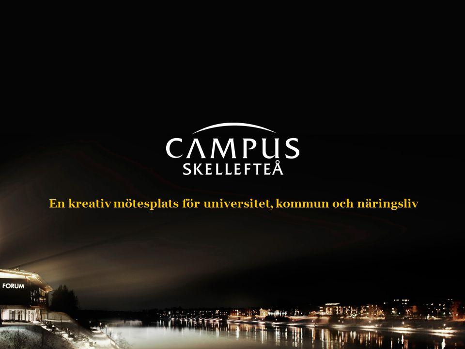 En kreativ mötesplats för universitet, kommun och näringsliv