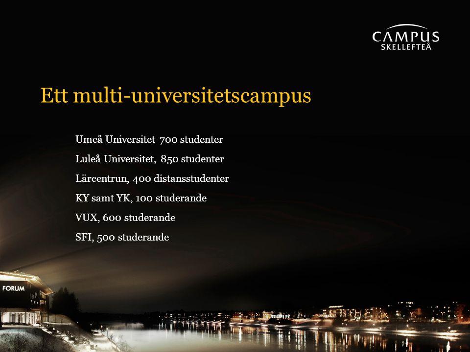 Ett multi-universitetscampus Umeå Universitet 700 studenter Luleå Universitet, 850 studenter Lärcentrun, 400 distansstudenter KY samt YK, 100 studerande VUX, 600 studerande SFI, 500 studerande