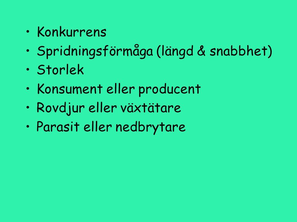 Konkurrens Spridningsförmåga (längd & snabbhet) Storlek Konsument eller producent Rovdjur eller växtätare Parasit eller nedbrytare