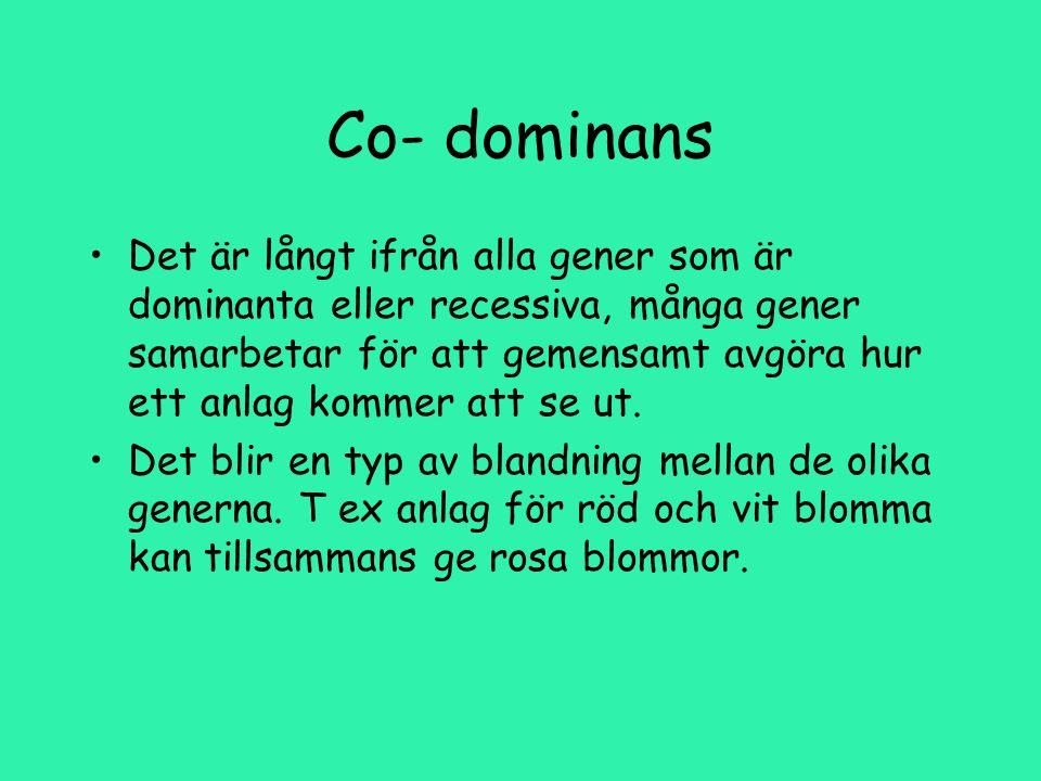 Co- dominans Det är långt ifrån alla gener som är dominanta eller recessiva, många gener samarbetar för att gemensamt avgöra hur ett anlag kommer att se ut.