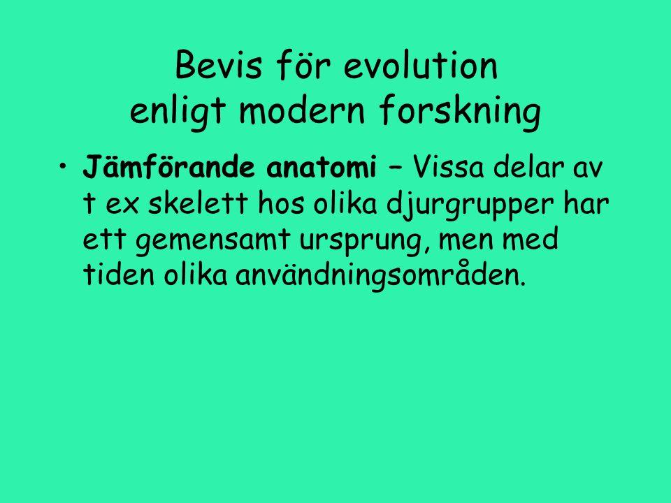 Bevis för evolution enligt modern forskning Jämförande anatomi – Vissa delar av t ex skelett hos olika djurgrupper har ett gemensamt ursprung, men med tiden olika användningsområden.