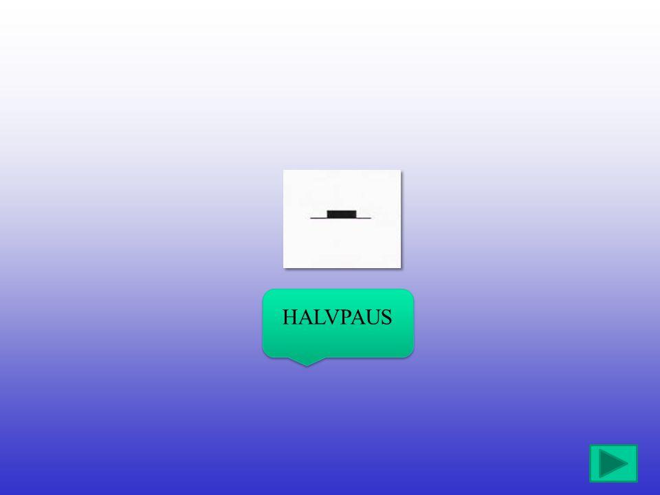 HALVPAUS