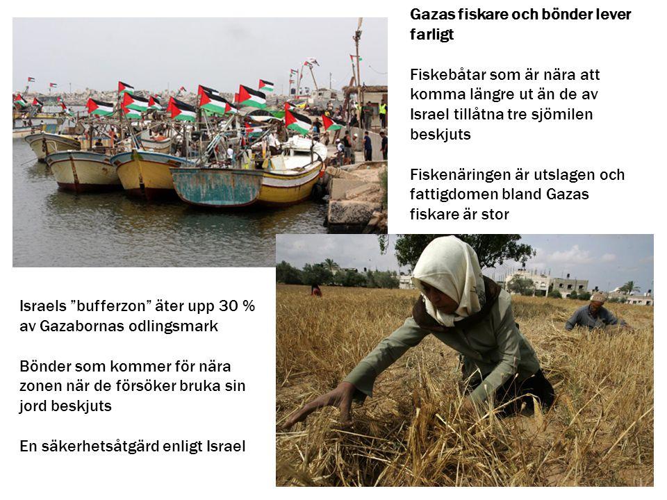 """Israels """"bufferzon"""" äter upp 30 % av Gazabornas odlingsmark Bönder som kommer för nära zonen när de försöker bruka sin jord beskjuts En säkerhetsåtgär"""