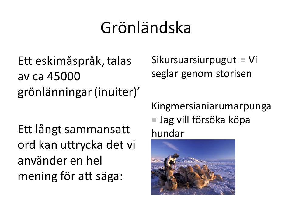 Grönländska Ett eskimåspråk, talas av ca 45000 grönlänningar (inuiter)' Ett långt sammansatt ord kan uttrycka det vi använder en hel mening för att säga: Sikursuarsiurpugut = Vi seglar genom storisen Kingmersianiarumarpunga = Jag vill försöka köpa hundar