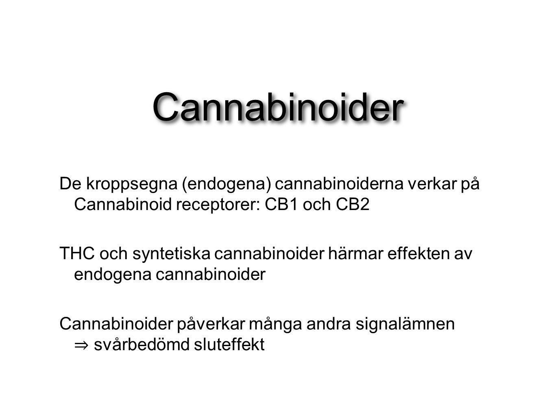 Cannabinoider De kroppsegna (endogena) cannabinoiderna verkar på Cannabinoid receptorer: CB1 och CB2 THC och syntetiska cannabinoider härmar effekten